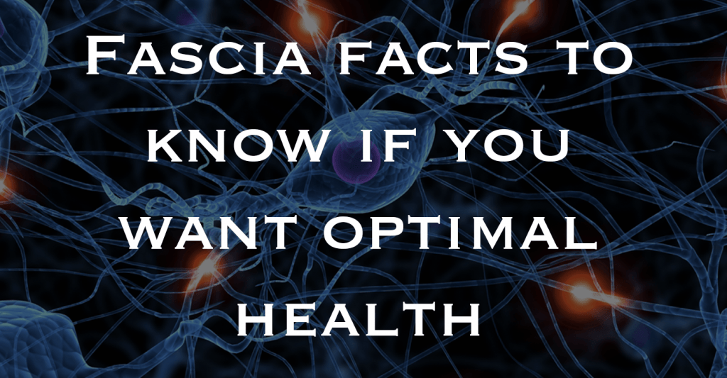 The Truth About Fascia - It Doesn't Just 'Wrap' Muscles & It Might Just be the Fountain of Youth! | Wondering what all the fuss is about fascia? Here are the top fascia facts to know if you want to use fascial release and optimization to get pain-free and feel your best! Click through to blog post and watch my video explanation.